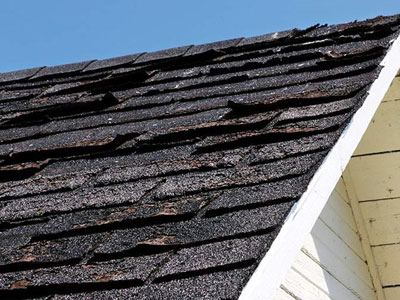 Skylight Roofing & Restoration Images